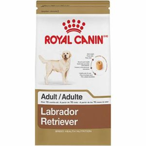Royal Canin Labrador Adult