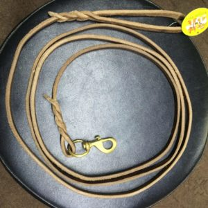 Dog show leash