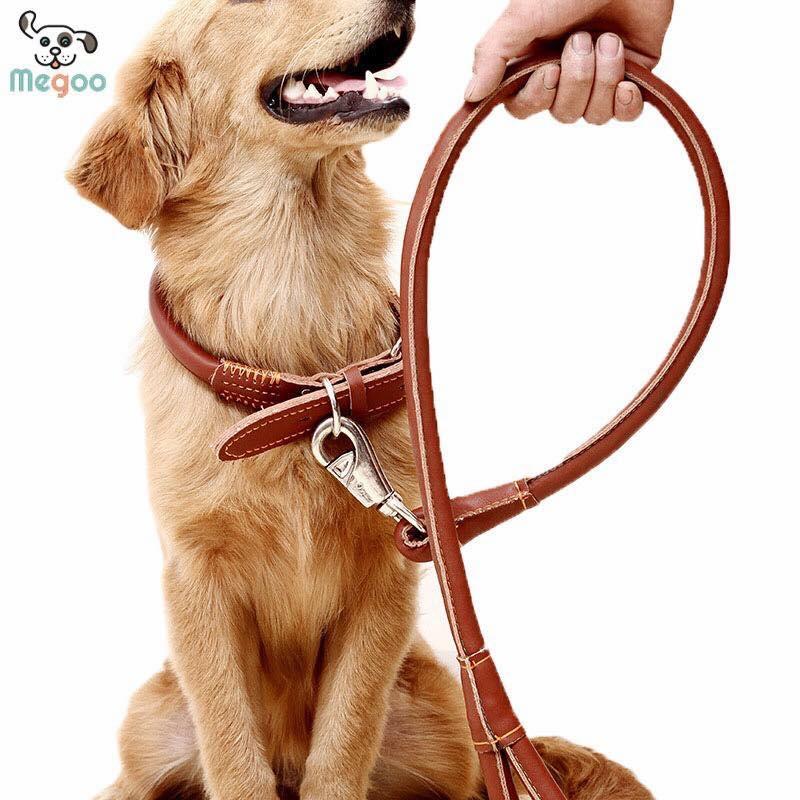 soft dog leash with collar