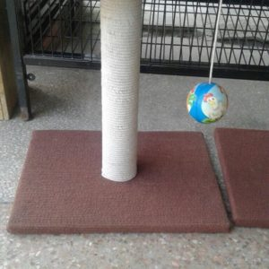 Scratch post with ball