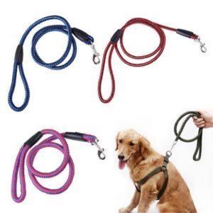 Round Nylon Dog Leash