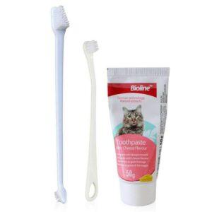Dental Hygiene set for Cats
