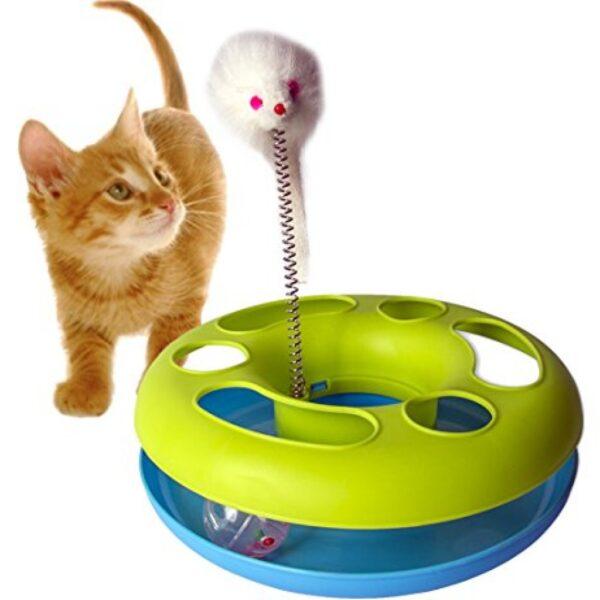 CAT PLAYING HAPPY CIRCLE