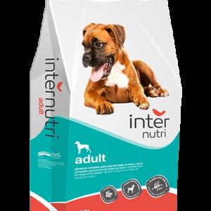 INTERNUTRI-adult dog food