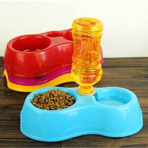 Dual port pet food dish bowl & automatic water dispenser